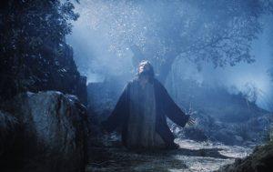 Cierpienia Jezusa w Getsemani